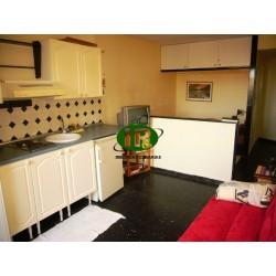 Однокомнатная квартира с американской кухней - 8