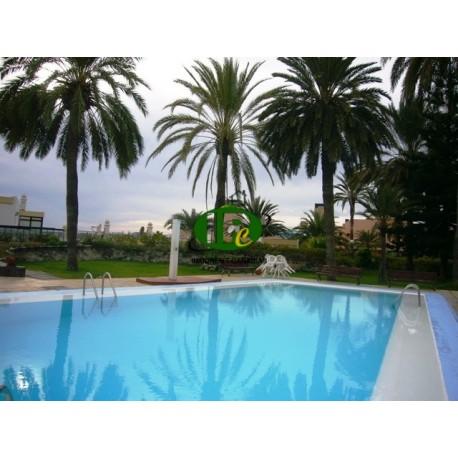 Zeer mooi appartement met 1 slaapkamer op de 2e rij naar de zee en het strand