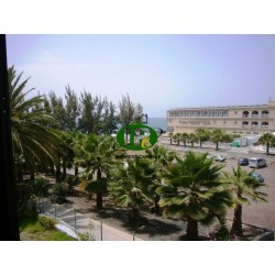 Vakantieappartement met 1 slaapkamer in San Agustin - 14