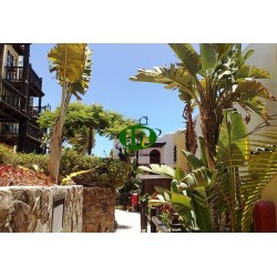 Apartamento de vacaciones con 1 dormitorio y terraza. - 5
