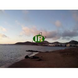 Studio-appartement op het strand van Las Canteras - 1