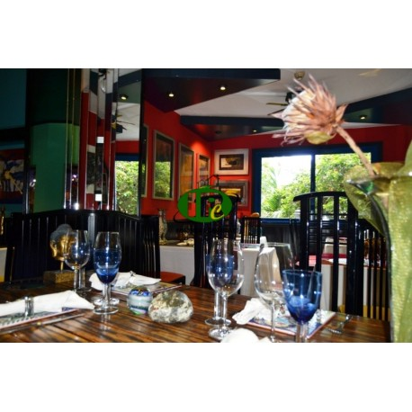Restaurant met 35 zitplaatsen binnen en terras met 40 zitplaatsen. om gezondheidsredenen te koop - 2