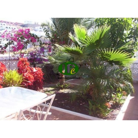 Apartment with 4 bedrooms and 2 bathrooms in Puerto Rico - 4